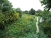 Nottm Canal foothpath